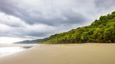 corcovado national park, osa peninsula, costa rica